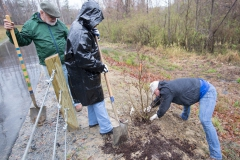 Volunteers plant trees along Phase II of Green Mill Run Greenway during ReLeaf's annual Community Tree Day event on Saturday, March 18, 2017.