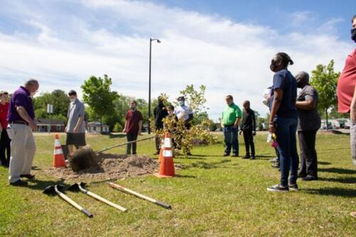 City of Greenville workers helping Students planting trees