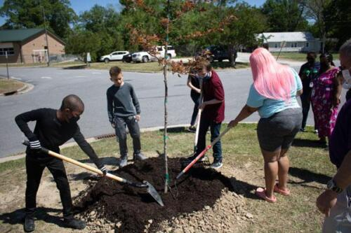 Students planting trees